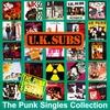 Couverture de l'album The Punk Singles Collection