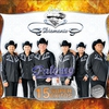 Couverture de l'album Serie Diamante - 15 Súper Éxitos: Palomo