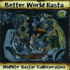 Couverture de l'album Better World Rasta