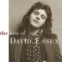 Cover of the track Best of David Essex