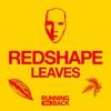 Couverture de l'album Leaves - EP