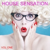 Cover of the album House  Sensation, Vol. 1 (Selected By Paolo Madzone Zampetti)