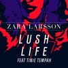 Couverture du titre Lush Life Feat.tinie Tempah