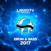 Cover of the album Liquicity Drum & Bass 2017