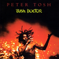 Cover of the track Bush Doctor
