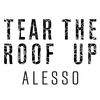 Couverture de l'album Tear the Roof Up - Single