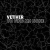 Couverture de l'album To Find Me Gone