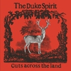 Cover of the album Cuts Across the Land