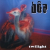 Couverture de l'album Twilight