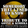 Cover of the track Somebody That I Used To Know (Quba Remix)