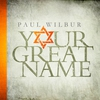 Couverture de l'album Your Great Name