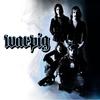 Cover of the album Warpig