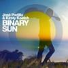 Couverture de l'album Binary Sun