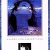 Cover of the album Into a Secret Land