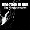 Couverture de l'album Reaction In Dub