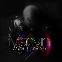 Cover of the track Mes couleurs