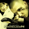 Cover of the album Kameleon