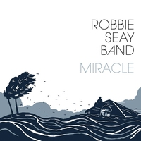 Cover of the track Miracle (Deluxe Edition)