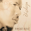 Cover of the album Swazi Soul