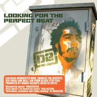 Couverture du titre Looking for the Perfect Beat