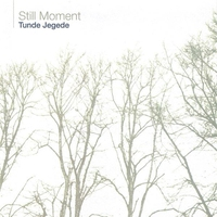 Cover of the track Still Moment