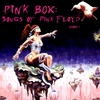 Cover of the album Pink Box: Songs of Pink Floyd