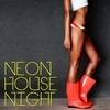 Cover of the album Neon House Night
