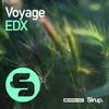 Couverture du titre Voyage (Original Club Edit)