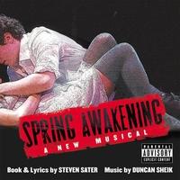 Cover of the track Spring Awakening