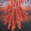 Couverture de l'album Raíz