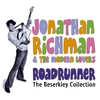 Couverture de l'album Roadrunner: The Beserkley Collection