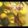 Couverture de l'album Silent Night