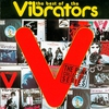 Cover of the album The Best of the Vibrators