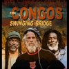 Couverture de l'album Swinging Bridge