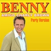 Couverture de l'album Amigo Charly Brown - Single
