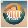 Couverture de l'album Space Ibiza 2015 (Mixed by Pleasurekraft, Technasia, Eli & Fur and Mark Brown)