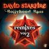 Couverture de l'album Bollyhood Bass Remixes, Vol. 2