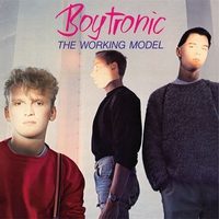 Cover of the track The Working Model (Deluxe Edition)
