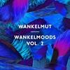 Couverture de l'album Wankelmoods, Vol. 2