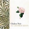 Couverture de l'album Chakra Noir