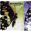 Couverture de l'album The Butterfly Effect
