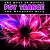 Cover of the album The Best of Polena Psy Trance