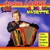 Cover of the track Accordéon En fête