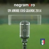 Cover of the album Un amore così grande 2014 - Single