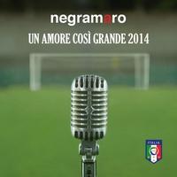Couverture du titre Un amore così grande 2014 - Single