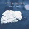 Couverture de l'album Blue Gardenia