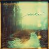 Cover of the album Aukai