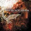 Couverture de l'album A Shared History of Tragedy