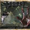 Couverture de l'album Cyanide Christ