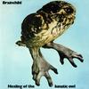 Couverture de l'album Healing of the Lunatic Owl (Remastered)
